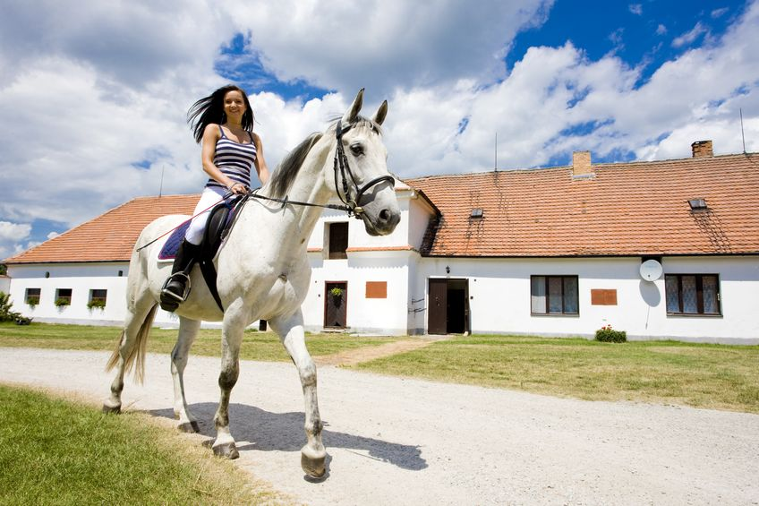 DFW Equestrian Real Estate For Sale